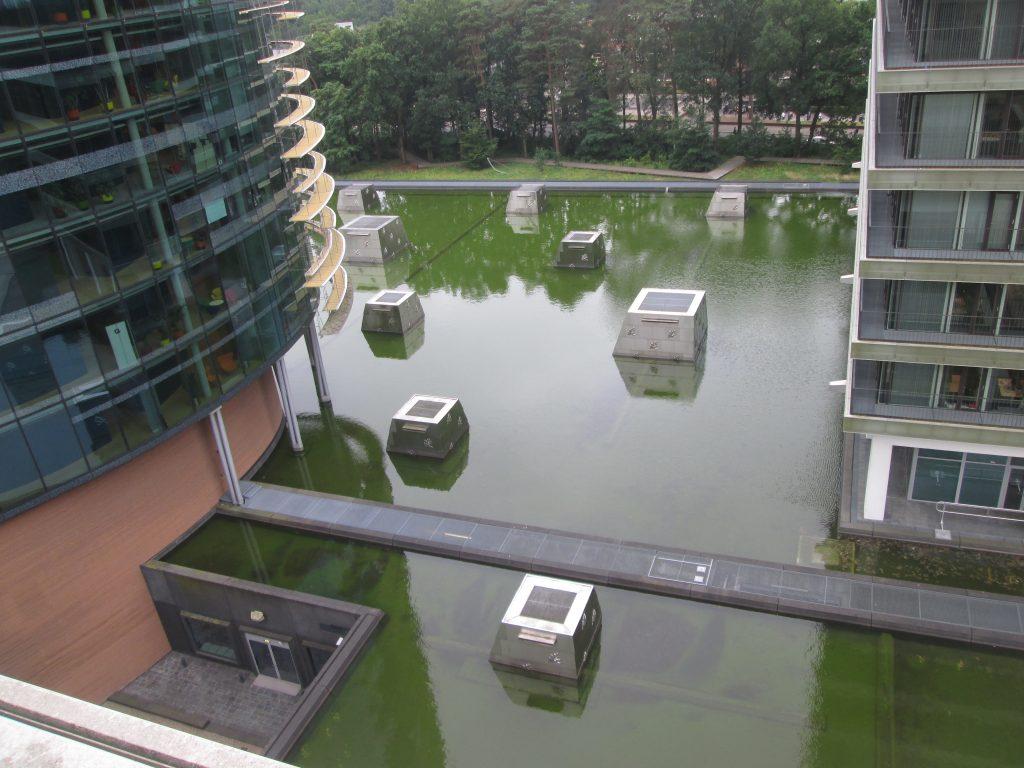 waterdaken